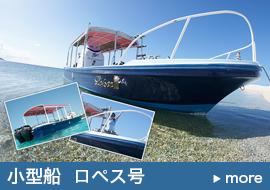 船貸切ツアー小型船(ロペス号)