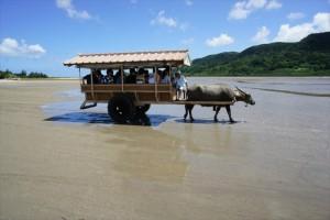 yuhu-island-sightseeing-spot-018_R