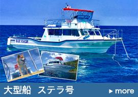 船貸切ツアー大型船(ステラ号)